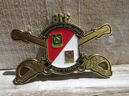 "U.S.ARMY Challenge Coin ""316th Cavalry Brigade """
