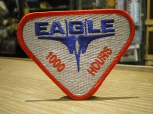 "U.S.AIR FORCE Patch ""F-15 EAGLE"""