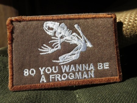 """U.S.NAVY SEALS PATCH """"SKULL FROG"""" used"""
