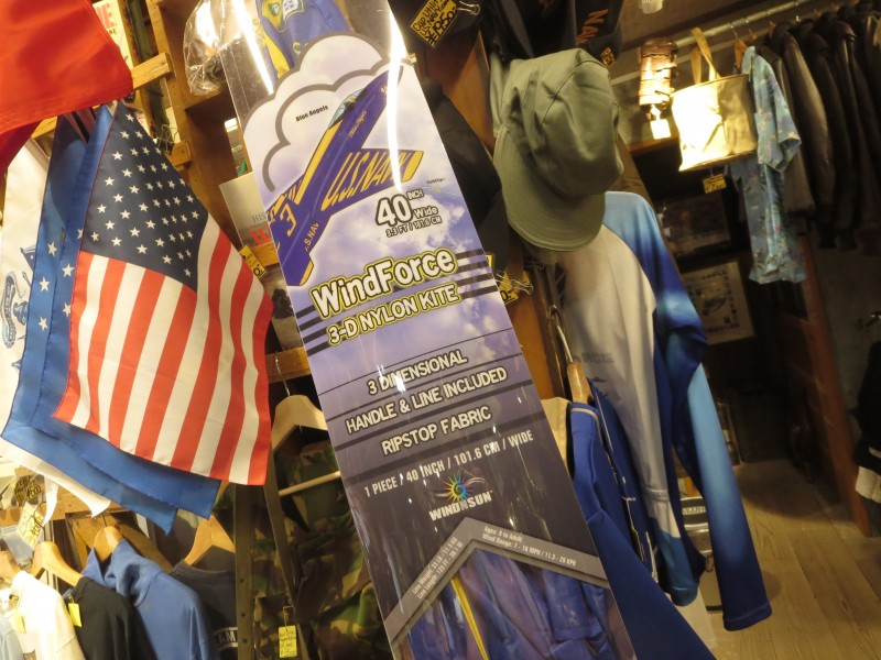 "U.S.NAVY ""BLUE ANGELS"" 3-D Kite new"